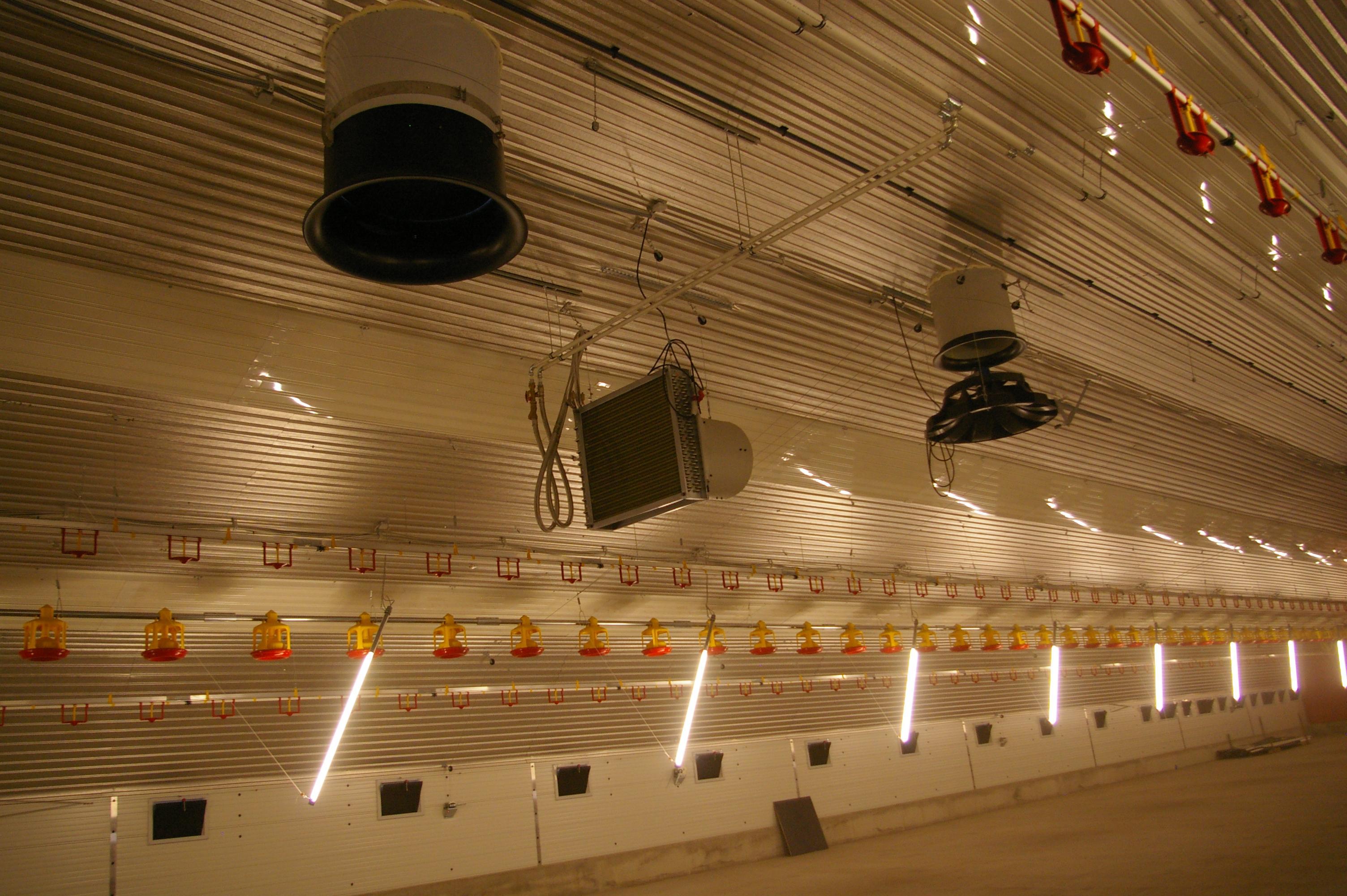 Освещение трубчатыми светильниками (Германия)